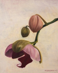 #14 Orchid Series 2012-13 folio